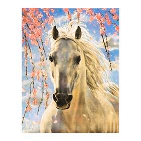 Роспись по холсту «Конь в цветах» по номерам с красками по3 мл+ кисти+инстр-я+крепёж, 30×40 см