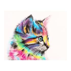 Роспись по холсту «Котенок» по номерам с красками по3 мл+ кисти+инстр-я+крепёж, 30×40 см