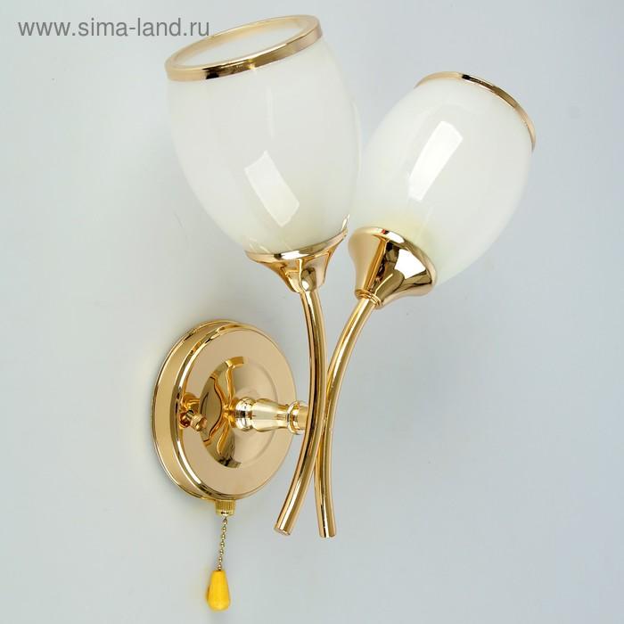 """Бра """"Тюльпан"""" 2 лампы E27 60W 14х25х28 см."""