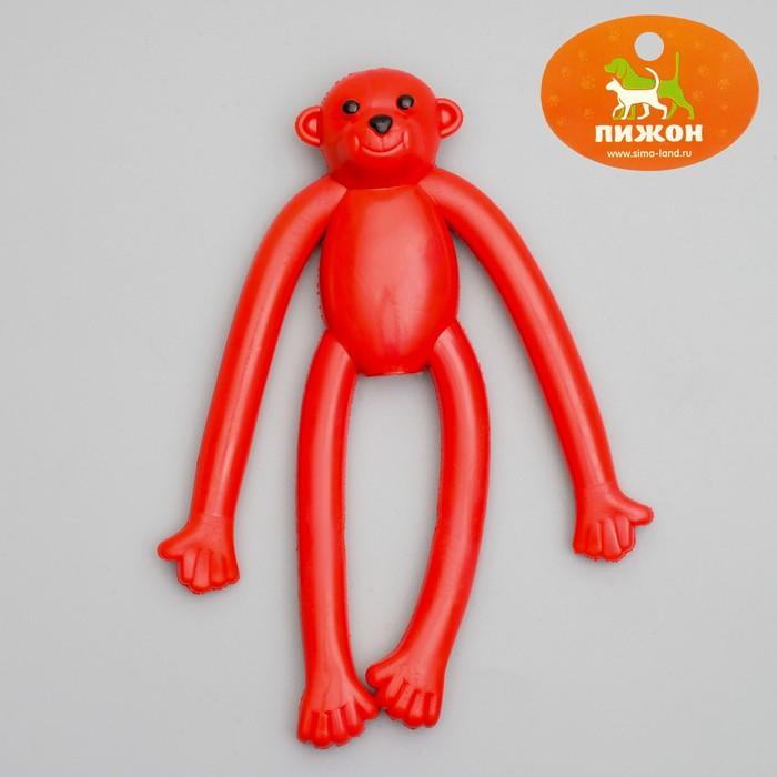 """Игрушка для собак """"Обезьяна"""" с пищалкой, 19,5 см, силикон, микс цветов"""