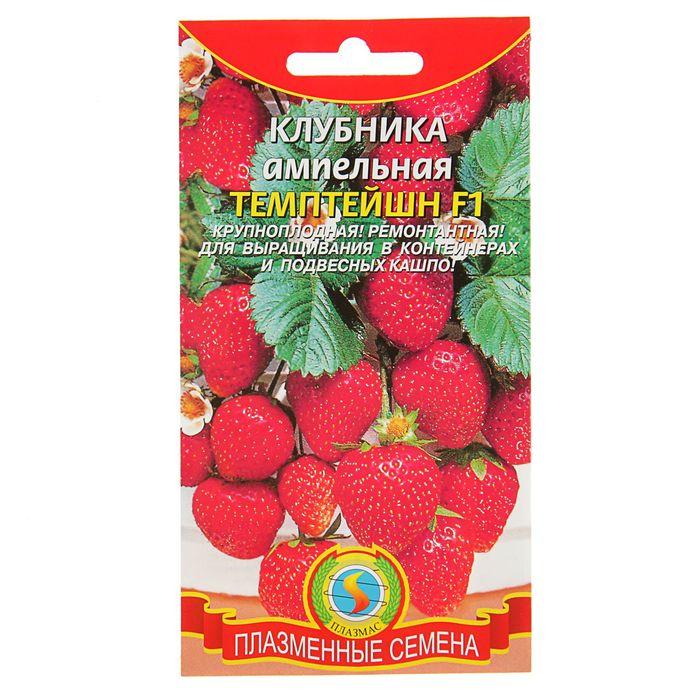 Семена Клубника ампельная