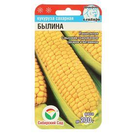Семена Кукуруза 'Былина', 6 шт Ош