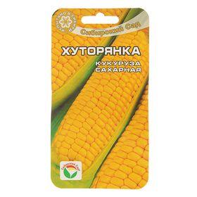 Семена Кукуруза 'Хуторянка', 6 шт Ош