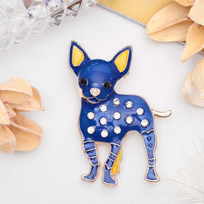 """Брошь """"Собака"""" чихуахуа, цвет синий в золоте"""