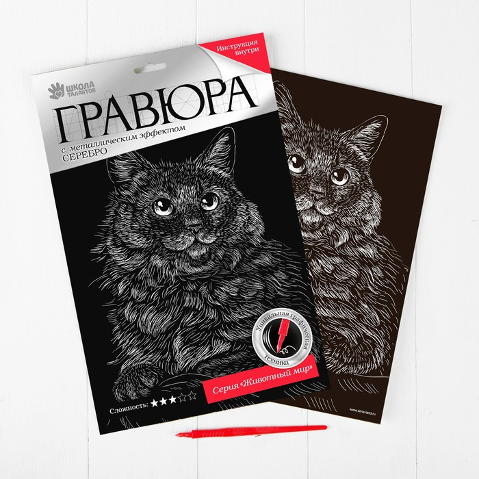 """Гравюра """"Сибирская кошка"""", металлический эффект """"серебро"""", 21 х 30 см"""