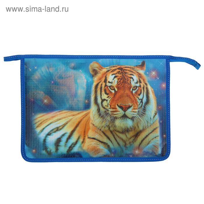 Папка д/тетрадей А4 молния сверху, ламинированнаый картон «Космический тигр» металлик 8Ш4 804247