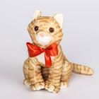 """Мягкая игрушка """"Кошка Василина"""", рыжая, 24 см"""