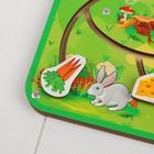 Лабиринт - пара «Чем питаются животные?» - фото 105590020