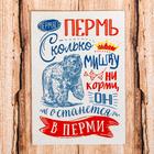 Магнит «Пермь»