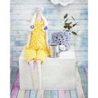 Интерьерная кукла «Элис», набор для шитья, 18 × 22 × 3.6 см