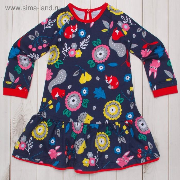 Платье для девочки, рост 110 (30) см, цвет синий/красный И-031/2