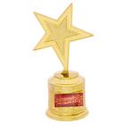 "Звезда награда ""Лучший музыкант"""
