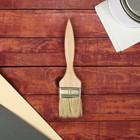 Кисть плоская, тонкая, деревянная ручка, 50 х 8 мм