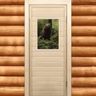 "Дверь для бани и сауны ""Бурый мишка"", 170х70см"
