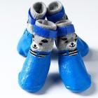 """Носки с прорезиненной подошвой """"Мишки"""", размер L (5 х 6.5 см), синие"""