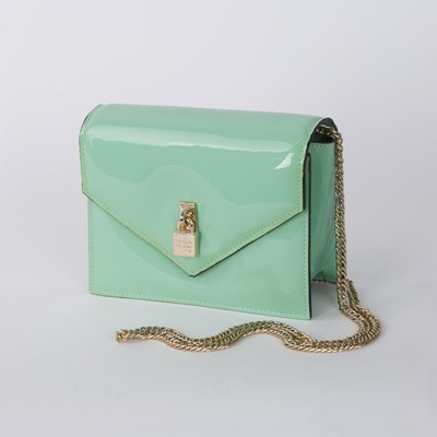 Bag ladies, 1 division on the magnet long chain, color mint