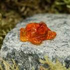 "Souvenir ""Frog cash"", 1.5 cm, amber"