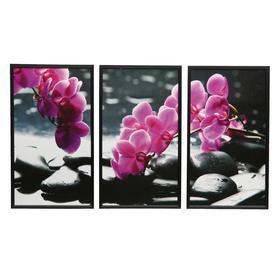 """Картина модульная в раме """"Орхидеи на камнях"""" (36х63- 3шт)  63х108 см"""