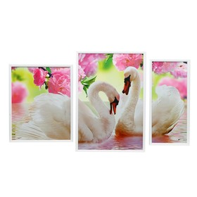 """Картина модульная в раме """"Белые птицы"""" (39х48, 43х63, 26х53)  63х108 см"""