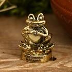 Фигура лягушки «Исполнения желаний»