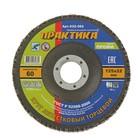 """Круг лепестковый шлифовальный """"ПРАКТИКА"""", 125х22 мм, Р60, 1шт"""