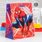 """Пакет ламинированный вертикальный """"С Днем рождения!"""", Человек-паук, 18 х 23 х 10 см"""