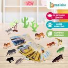 Набор животных с обучающими карточками «Дикие животные разных стран», животные пластик, карточки, по методике Монтессори - фото 76136687