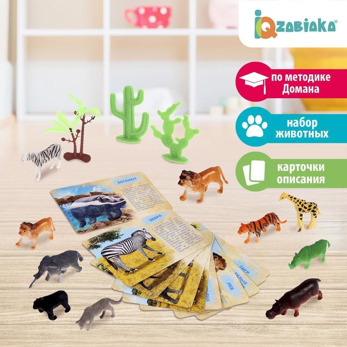 Набор животных с обучающими карточками «Дикие животные разных стран», животные пластик, карточки