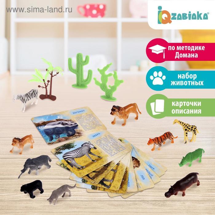 """Набор животных с обучающими карточками """"Дикие животные разных стран"""", 10 животных"""