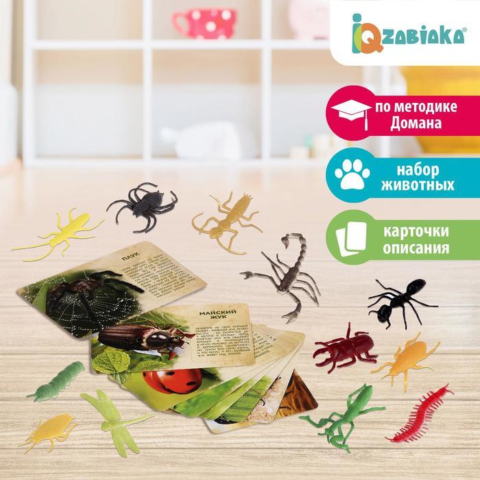 Набор животных с обучающими карточками «В мире насекомых», животные пластик, карточки