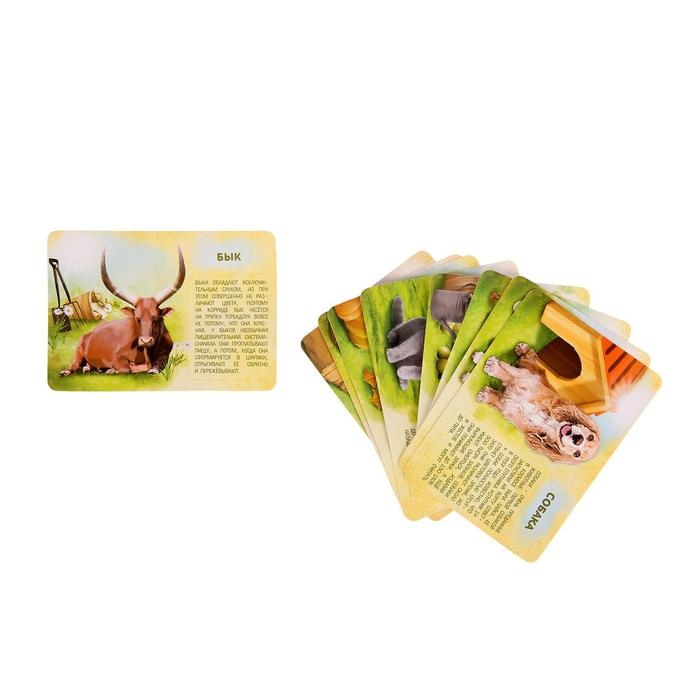 Набор животных с обучающими карточками «Фермерское хозяйство», 10 животных, 9 карточек - фото 536518099