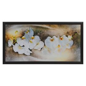 """Картина """"Орхидея"""" 55х105 см"""