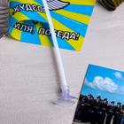 """Флаг на присоске """"ВВС"""""""