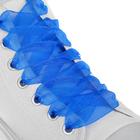 Шнурки для обуви, пара, капроновые, плоские, 20 мм, 110 см, цвет синий