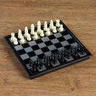 Шахматные фигуры, высота короля 3.8 см, пластик, чёрно-белые, в пакете