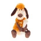"""Мягкая игрушка """"Пёс Робинзон"""" с косточкой, 23 см"""