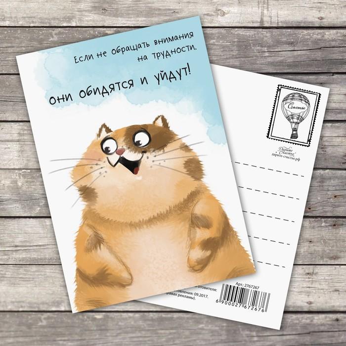 Февраля, как сделать онлайн открытку с пожеланиями на каждый день