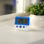 Термометр электронный C-601, выносной датчик 90см, LR44 в комплекте