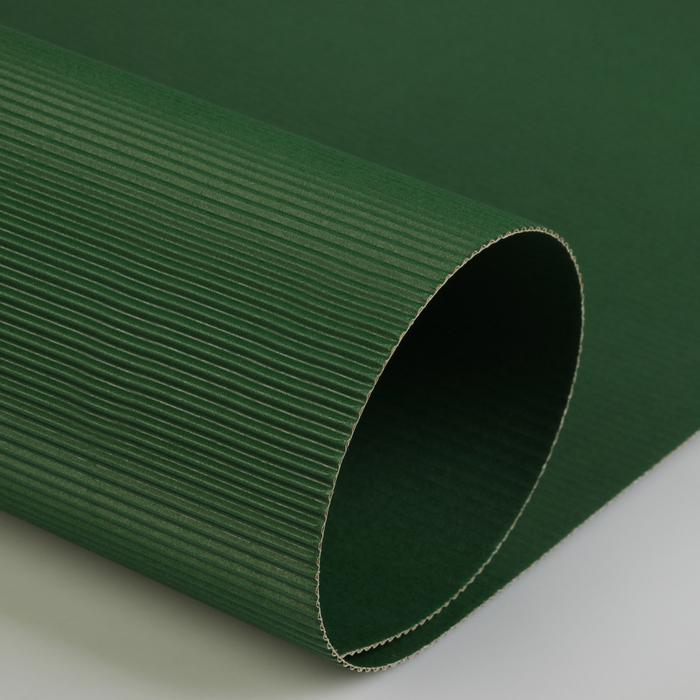 Картон цветной гофрированный 700*500 мм Werola e-wave, 110 г/м², зеленый мох
