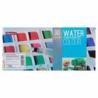 Краски акварельные 30цв в кюветах в пластиковой коробке с палитрой с кистью