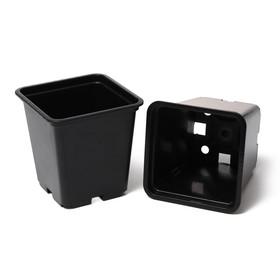 Набор для рассады: стаканы по 320 мл (8 шт.), 6.5 × 6.5 × 10 см, чёрный