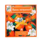 """Аромасаше в почтовом конверте """"Яркого настроения!"""" с ароматом мандарина и цветов миндаля"""