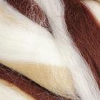 Гребенная лента 100% тонкая  шерсть мультиколор 100гр (6100) МИКС