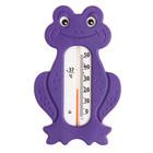 Термометр водный «Сувенир. Лягушонок», цвета МИКС