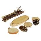 Набор Березовый лунь ( Веточки берёзы с косым срезом, 3 круглых спила, 2 шишки)