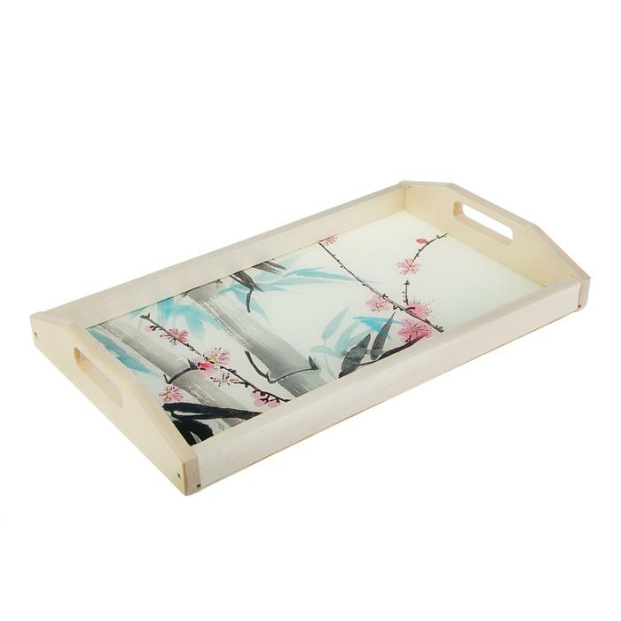 """Поднос для завтрака """"Бамбук"""", стеклянная поверхность, 50х7х29,5см"""