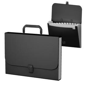 Папка-портфель А4 Erich Krause Classic с 12 отделениями, черная 43113 Ош