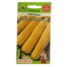 Семена Кукуруза 'Царевица', цп, 5 г Ош