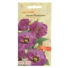"""Семена цветов Эустома """"Лагуна"""" Пурпурная, О, цп, 5 шт."""
