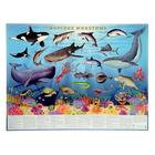 Настольное издание. Морские животные.